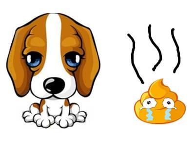 宠物(动物)粪便属于什么垃圾分类?
