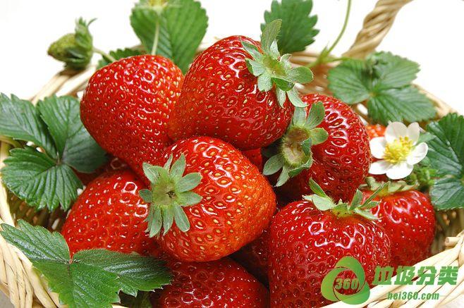 腐烂的草莓属于什么垃圾分类?