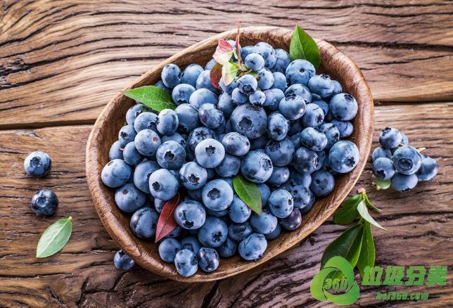 蓝莓属于什么垃圾分类?