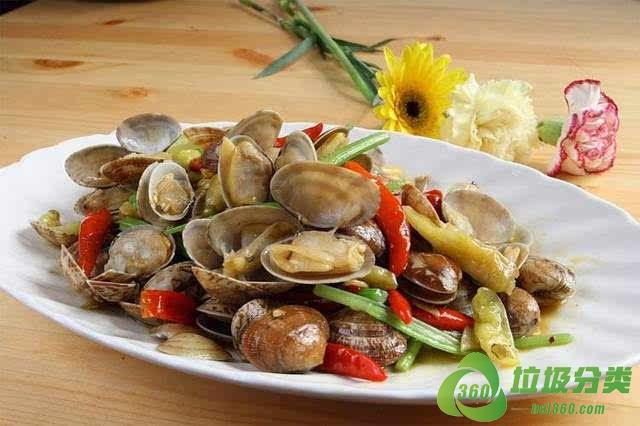 蛤蜊壳属于什么垃圾分类?