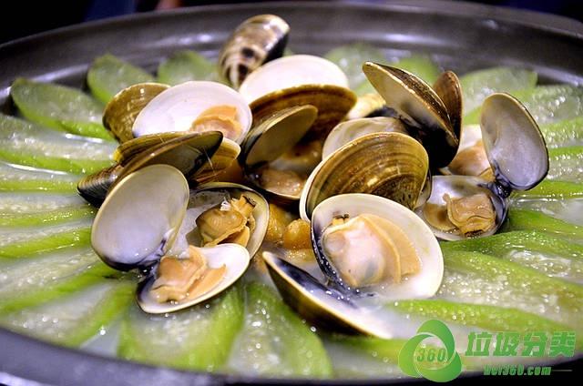 文蛤壳属于什么垃圾分类?