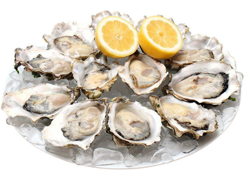 牡蛎壳(生蚝)属于什么垃圾分类?