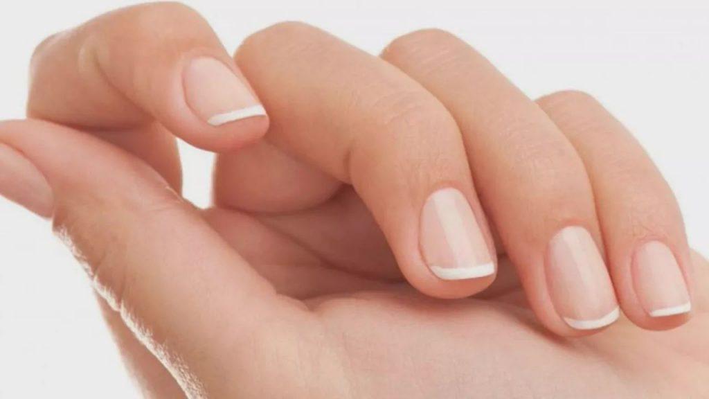 手指甲属于什么垃圾分类?