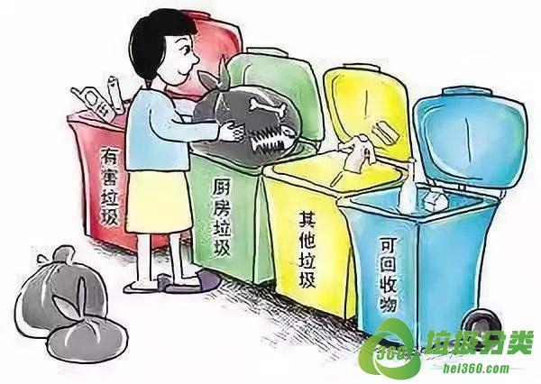 长春乱丢垃圾罚款多少钱?