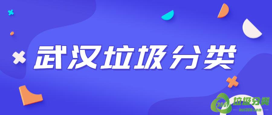 武汉垃圾分类投放指南标准