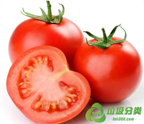 番茄(蕃柿、西红柿、洋柿子)属于什么垃圾分类?