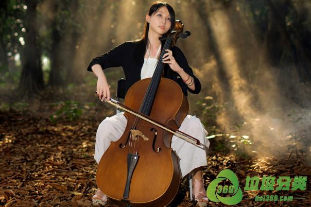 大提琴属于什么垃圾分类?