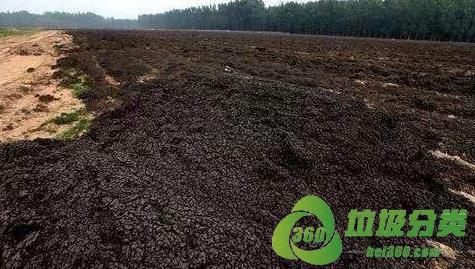 废水处理污泥属于什么垃圾分类?
